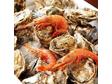 牡蠣とワインと魚と肉と。武蔵新田にて