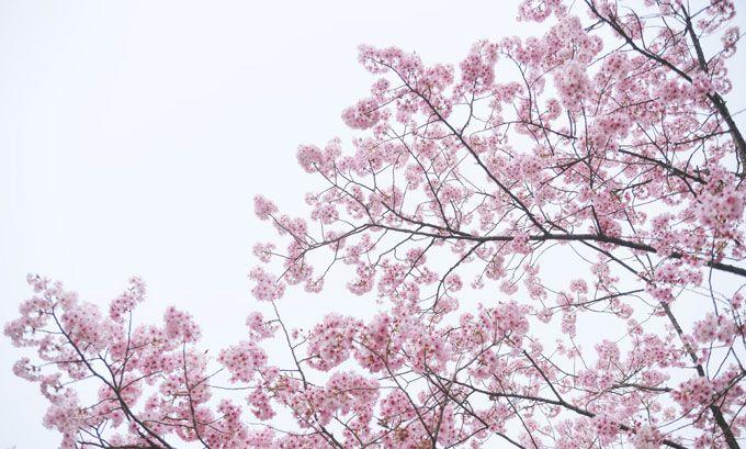 3月~4月にかけての人気アルバイトの紹介!